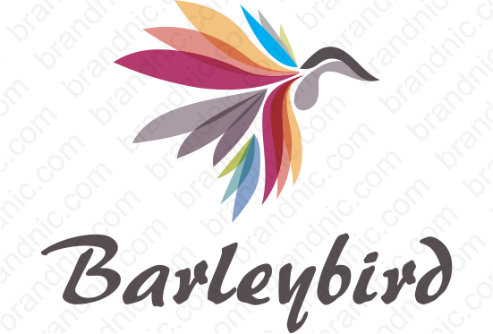 Barleybird.com - Buy this brand name at Brandnic.com