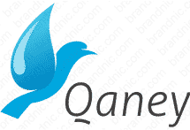 qaney.com logo