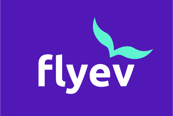 Flyev.com- Buy this brand name at Brandnic.com